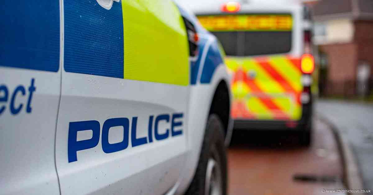 Two suspected thieves arrested after 97-year-old woman is confronted in her Newcastle home