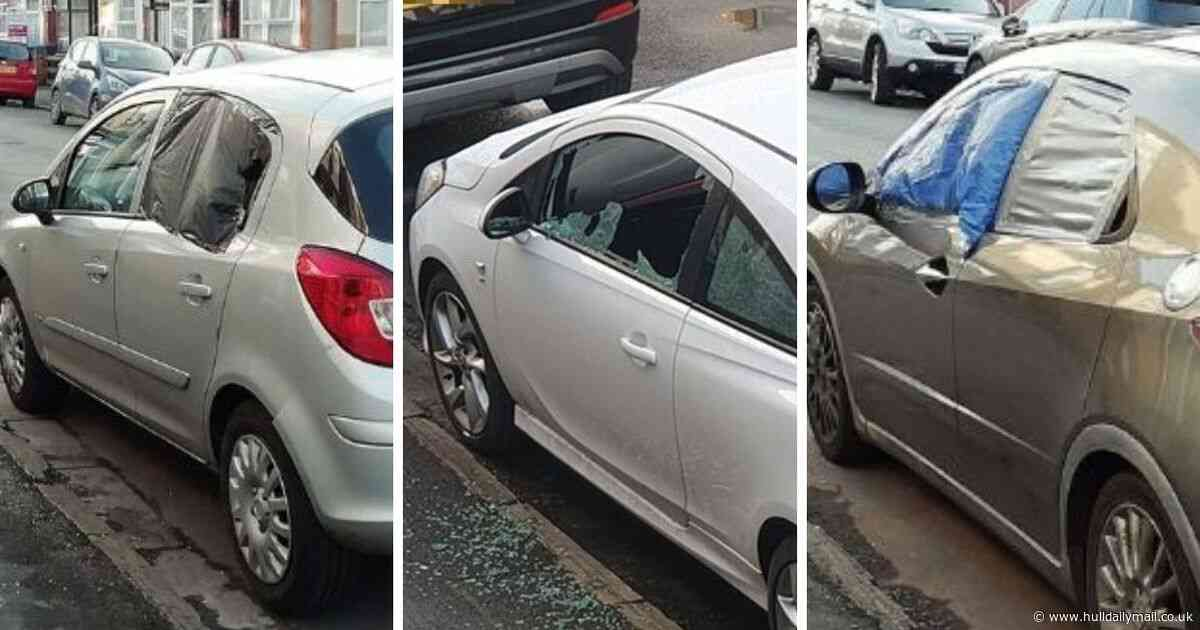 Nearly every car in the street smashed in 'mindless' overnight crime spree