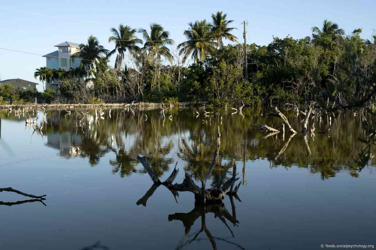 As Seas Rise, Some Places Can't Be Saved, Warn Florida Keys Officials