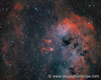 IC410 Nebula with Tadpoles