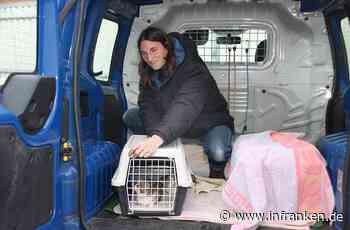 Franken helfen Franken: ein neues Auto für den Tierschutzverein