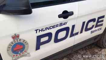 Thunder Bay police officer dragged by stolen vehicle