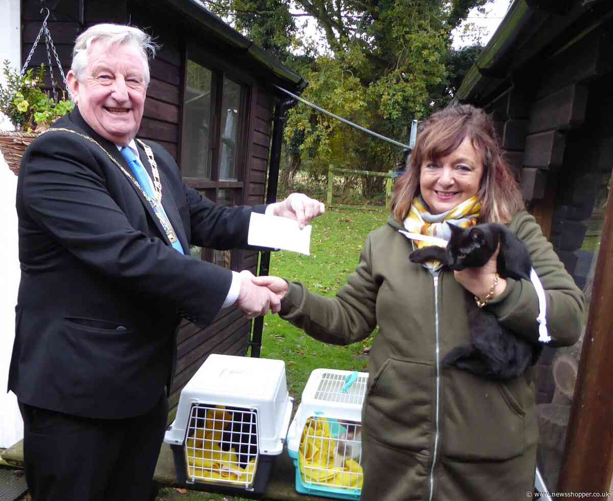 Bromley Mayor adopts three kittens from Downe rescue centre