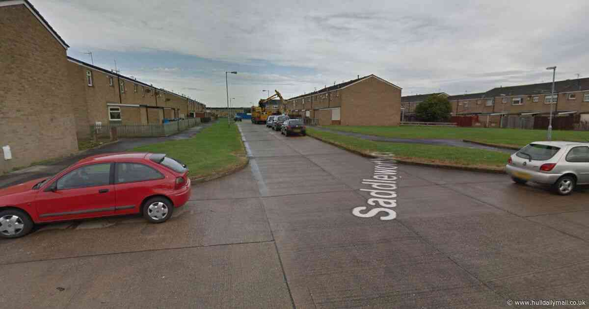 Toddler reunited with family after escaping home and roaming Bransholme streets by himself