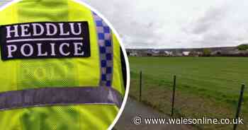 Man arrested after alleged sex attack on 16-year-old girl in Milford Haven
