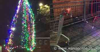 Christmas tree in Mountain Ash vandalised less than two days after lights are switched on