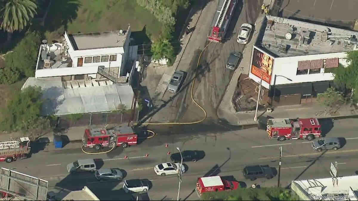 Man Seriously Burned, Dog Dies After Fire Engulfs Hillside Home In Los Feliz