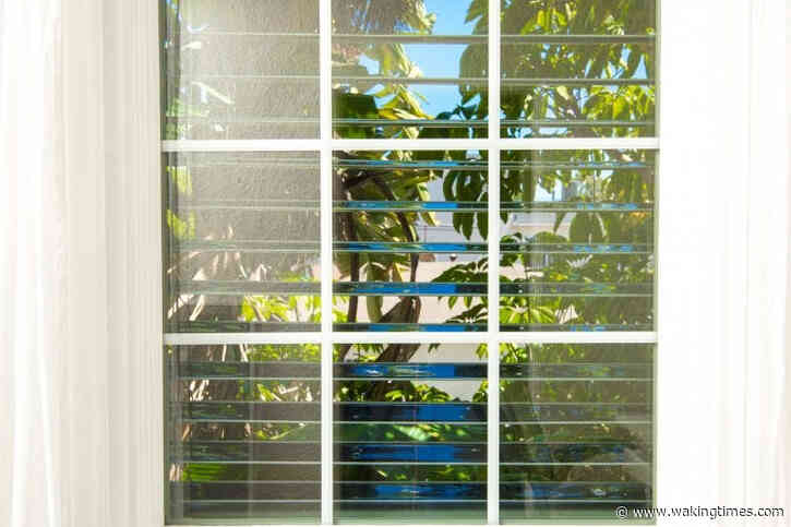 Solar Panel Blinds Can Help Power Your Whole Entire House