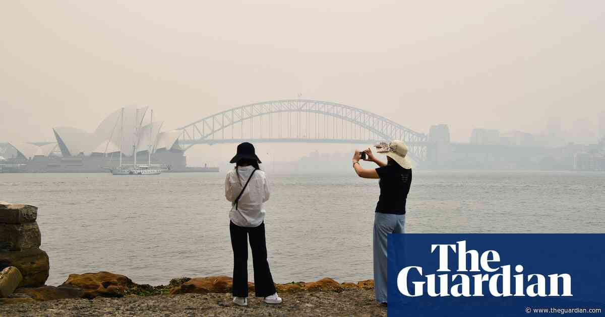 NSW bushfires: doctors sound alarm over 'disastrous' impact of smoke on air pollution