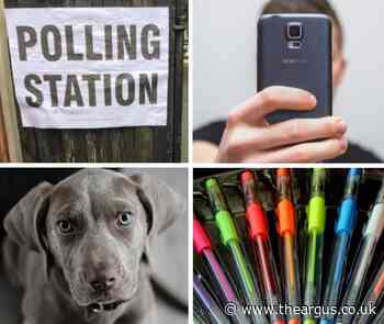 Election polling station rules - selfies, dogs, voting