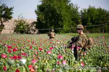 America's Lost War in Afghanistan