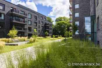 'De noodzakelijke vergroening van het woningbestand wordt fiscaal ontmoedigd'