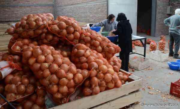 """Villarino: """"No se van a perder puestos de trabajo en la producción de cebolla"""", aseguró Bevilacqua"""