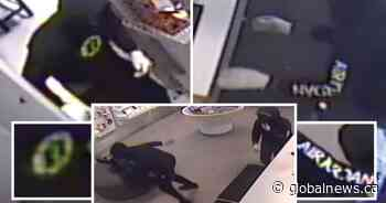 Police looking for suspects who allegedly robbed Ancaster Rogers store