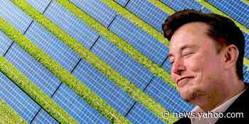 Elon Musk's Plan for One Giant Solar Farm Is a Little Insane, but Not Completely Insane