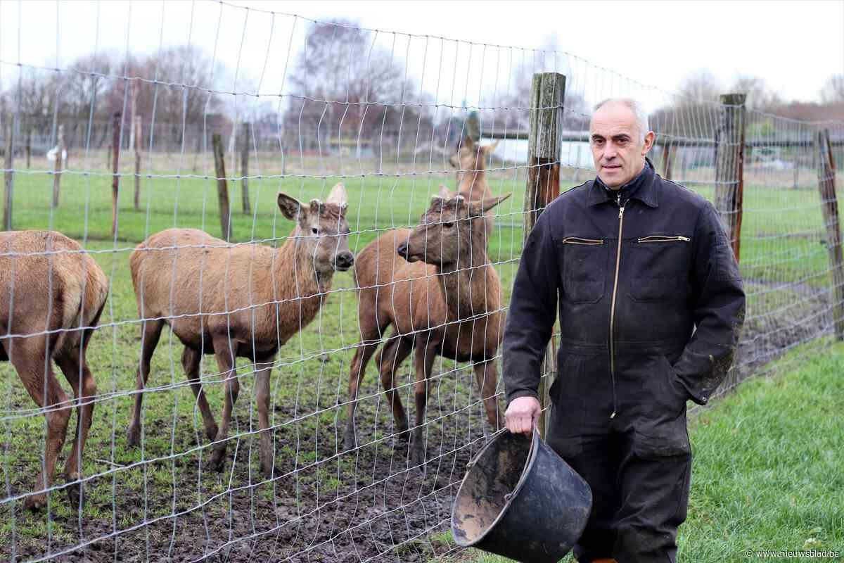 Cisse biedt co-housing in hertenboerderij