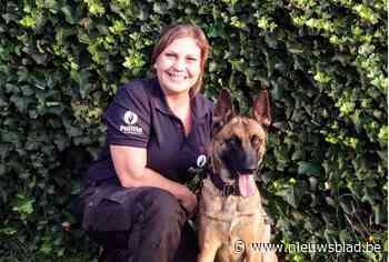 Nieuwe patrouillehond voor politiezone Demerdal
