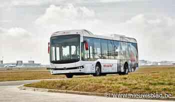 Van de tarmac naar de dorpskern: Machelen mag elektrische bussen van luchthaven gratis gebruiken