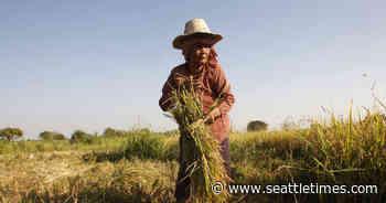 UN: Nearly a half-billion in Asia-Pacific still going hungry