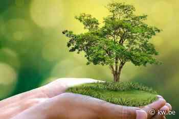 Cadeaubon om na geboorte een boom te planten in Wervik