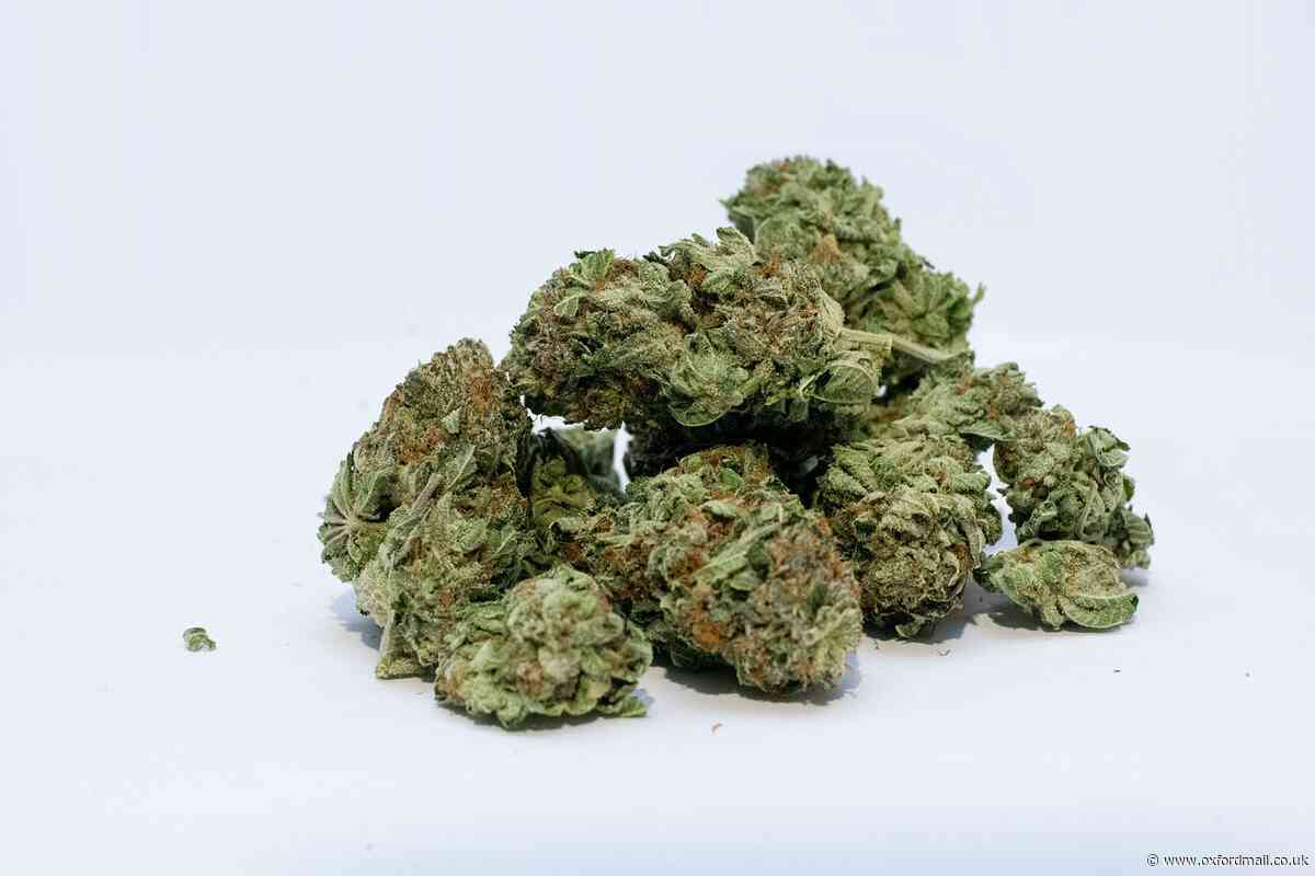 Cannabis dealer given final chance and spared jail