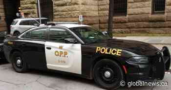 Pedestrian struck, killed by pickup on Hwy. 6 in Haldimand County