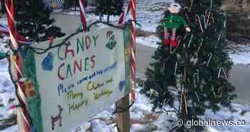 'Magical Christmas tree' spreading joy in Dawson Creek, B.C.