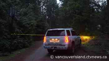 'It was a horror show in there': Witness describes scene of deadly B.C. plane crash