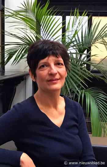 """FilmFest droomt van eigen Huis van de Film in Gent: """"We hebben een lange traditie en veel kennis van film"""""""