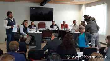 Constitución y Hualañé se sumaron a consulta ciudadana de este domingo en el Maule