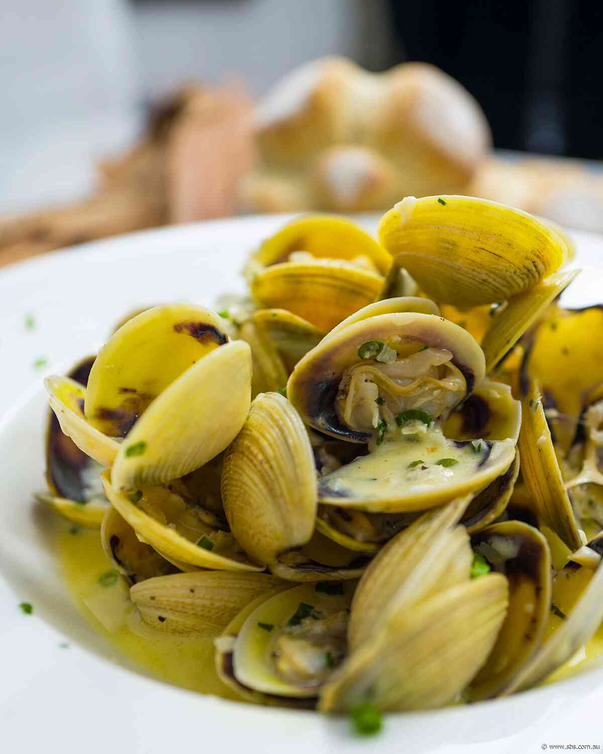 Lemon myrtle-scented white wine clams