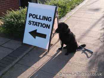Dogs at Oxfordshire polling stations - general election 2019
