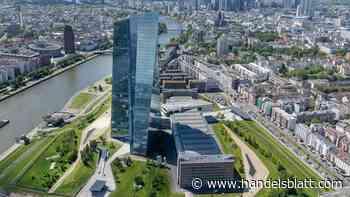 Zinsentscheid: EZB belässt Zinsen auf gegenwärtigem Rekordtief