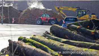 Firma lagert große Mengen Holzhackschnitzel