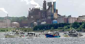 Key decision on fate of Nova Scotia's Northern Pulp mill could come any day