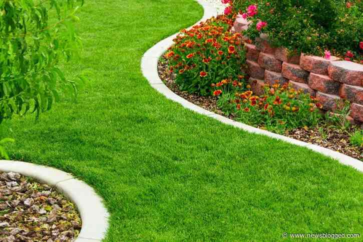 Things to Consider for your Dream House Landscape