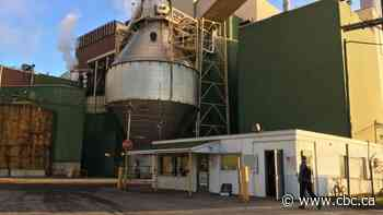 Pulp mill closure costs Outaouais more forestry jobs