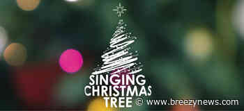 Happening today: Carmack 2nd annual Singing Christmas Tree
