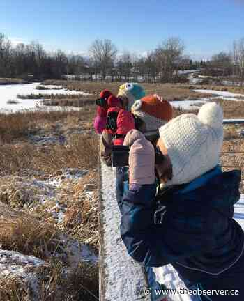 Christmas bird count takes flight Saturday