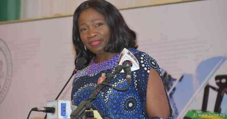 Nigerians detained in Bosnian camps will return safely – Dabiri-Erewa