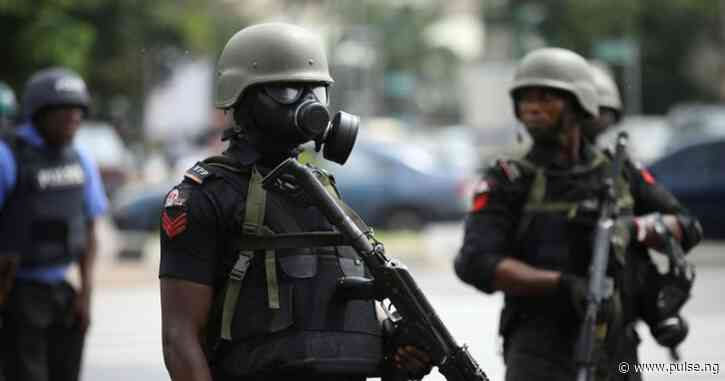 Police arrest criminal 50 suspects in Edo