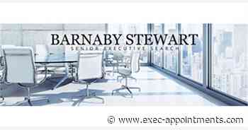 Barnaby Stewart Executive Search & Selection: Chief Executive Officer USA