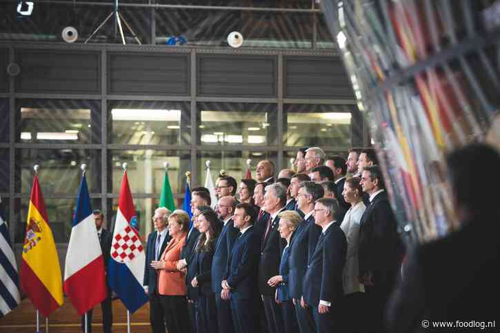 Een groene en ambitieuze maar zachte agenda in een verzwakte EU