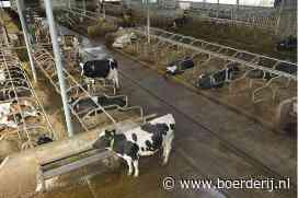 CDA Brabant uit coalitie om stikstofbeleid