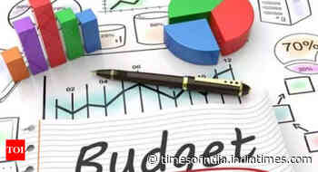Budget likely on Feb 1, eco survey on Jan 31