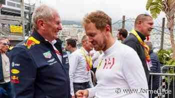 Helmut Marko: Vettel nicht mehr unter den Besten