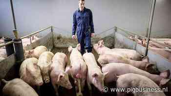 Fotoserie: Koen van Eijk: 'Door finetunen ouderlijk bedrijf klaar maken voor toekomst'