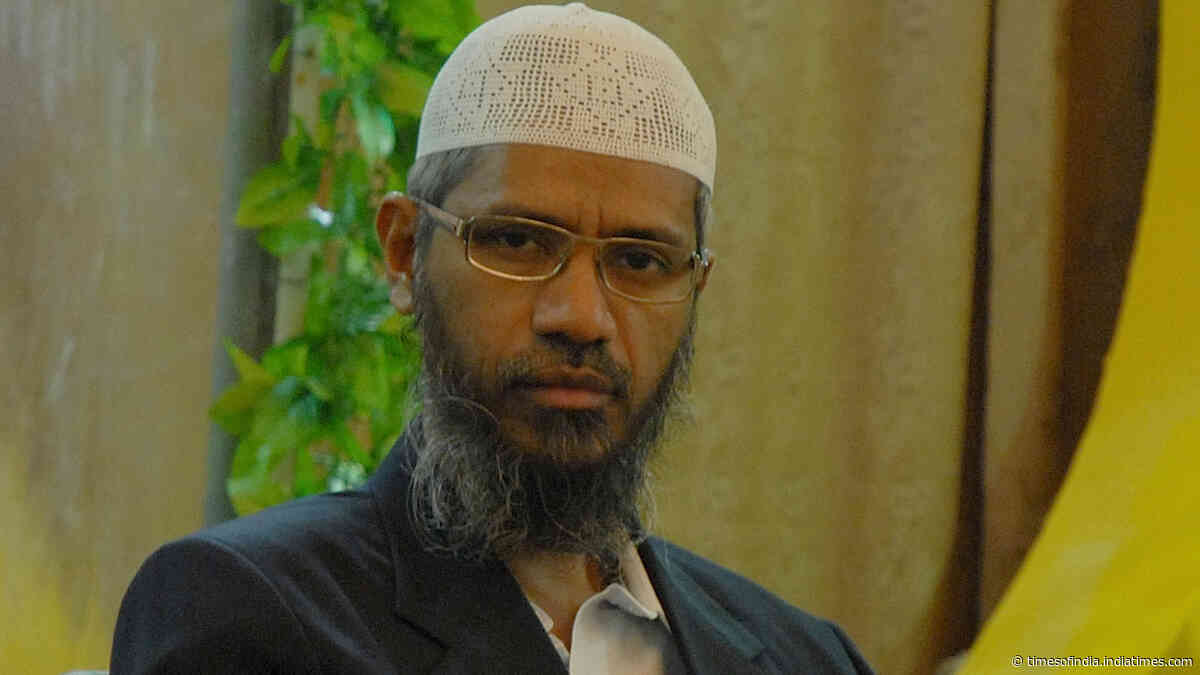 People can preach good Islam, but can't allow those who preach hate: Former Maldives President on Zakir Naik
