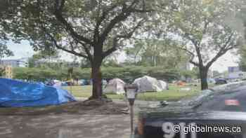 Calls for action at Oppenheimer Park