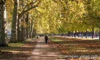 London's Royal Parks to pay attendants living wage following strikes